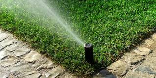 The Pros and Cons of Installing a Yard Irrigation System